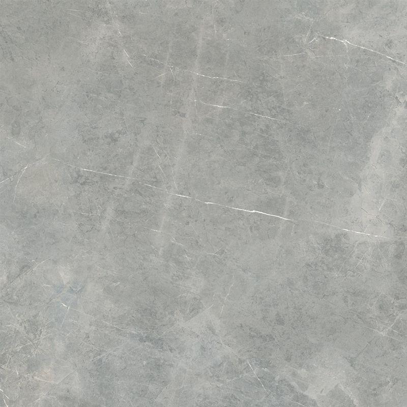 Grey Amani