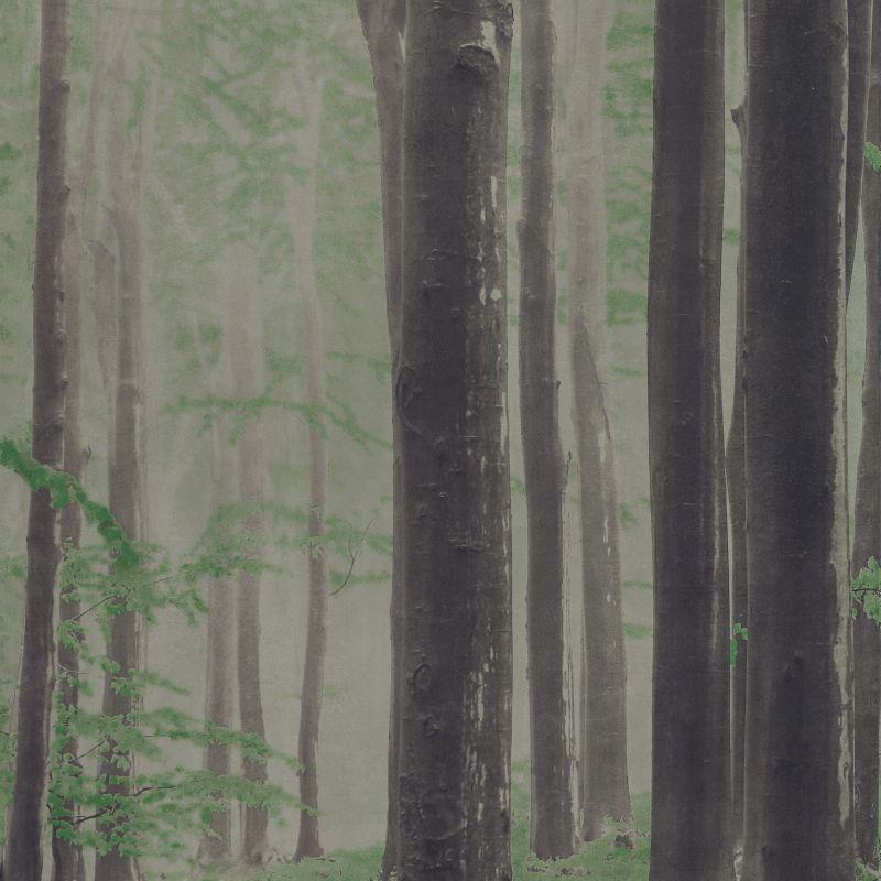 Woods A