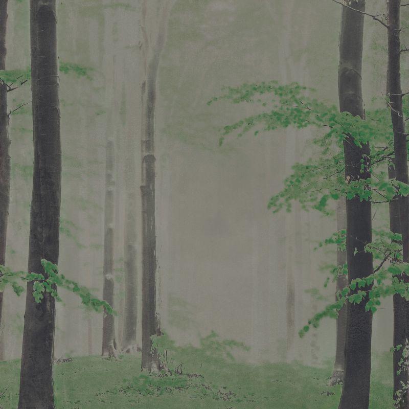Woods B